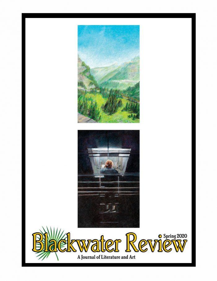2020 Blackwater Review